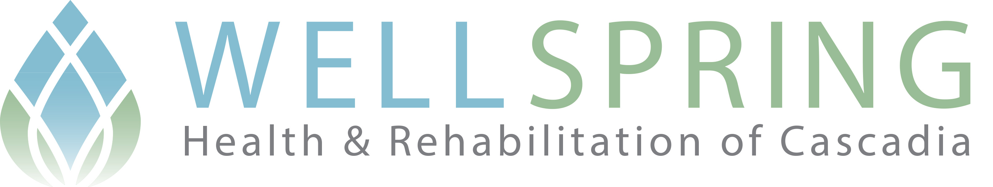 Wellspring Health & Rehabilitation